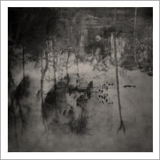 """""""Where You Come From is Gone"""" by Gusdugger Tintype"""