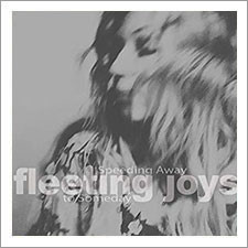 Fleeting Joys - Speeding Away to Someday